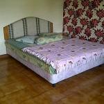 Sewa Villa Kota Bunga Puncak Murah Montana 2 kamar